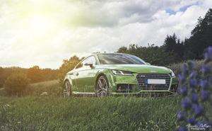 Javagreen_Audi_TTS_2016